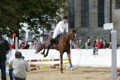 Pferdetage05_010