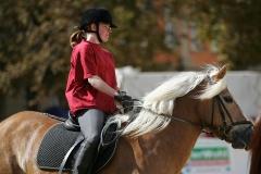 Pferdetage05_015