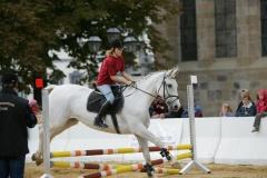Pferdetage05_023