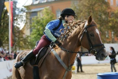 Pferdetage05_035