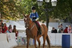 Pferdetage05_051